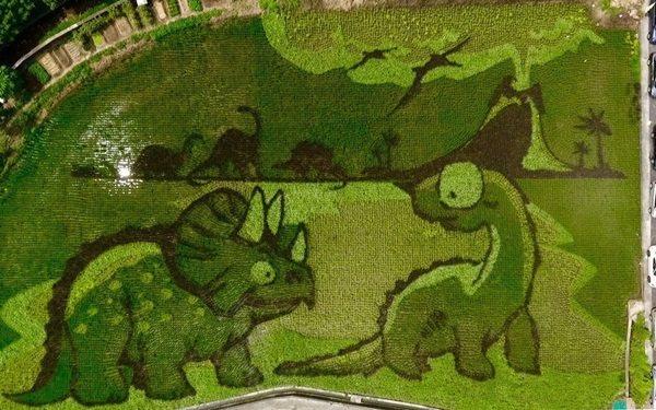 侏羅紀公園稻田彩繪主題。 圖/林滄淵提供