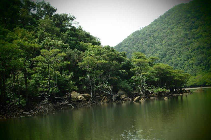 西表島叢林、河流四佈,除了公路,當地聚落對外聯繫的交通管道就是船隻,平良先生說,...