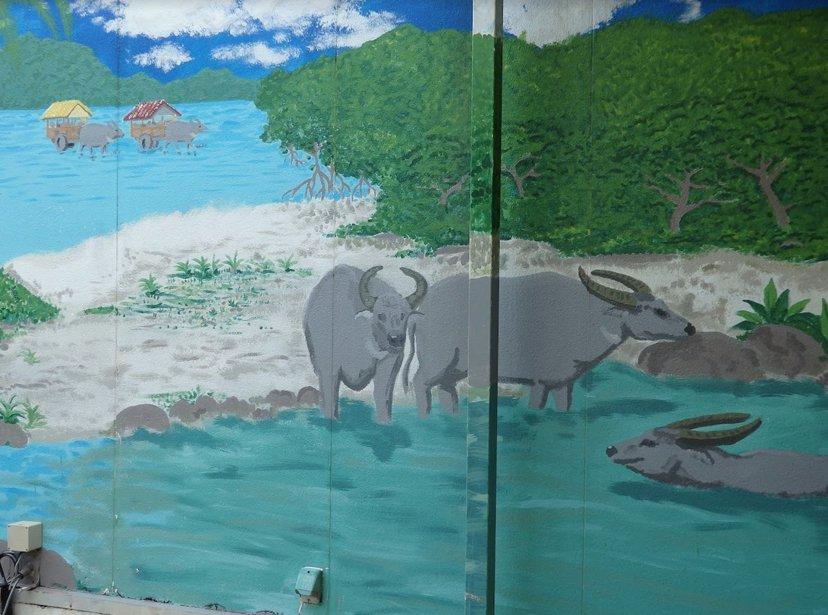 八重山的水牛來自臺灣,西表島有許多台灣礦工,以稻米為傲稻葉聚落,原來也差點成為台...