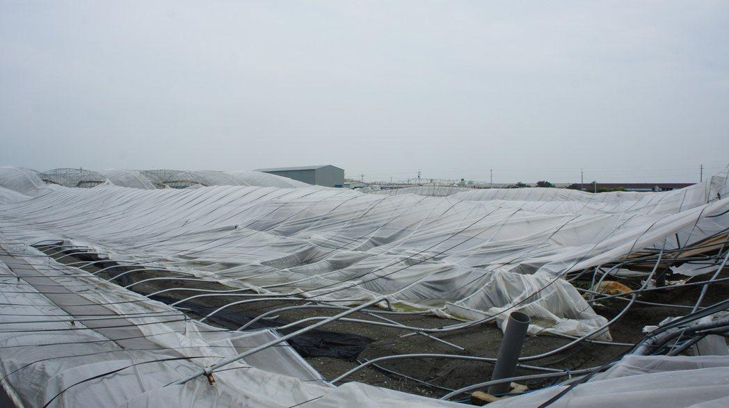 許多農民溫網室經過颱風侵襲嚴重倒塌,損失相當慘重。圖/聯合報系資料照。