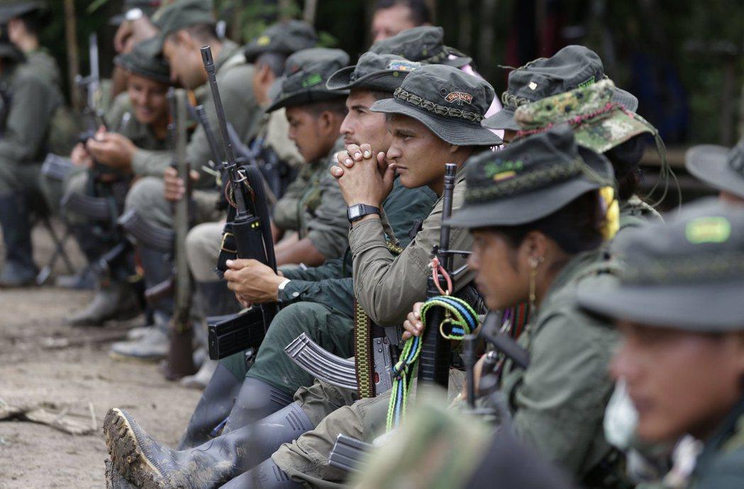 哥倫比亞左派叛軍「哥倫比亞革命軍」8月17日在哥國普圖馬約省一處叢林,聽取和平進...