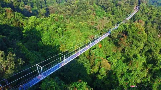 全長199.9公尺的廣西第一座玻璃懸索橋。(取自網路)