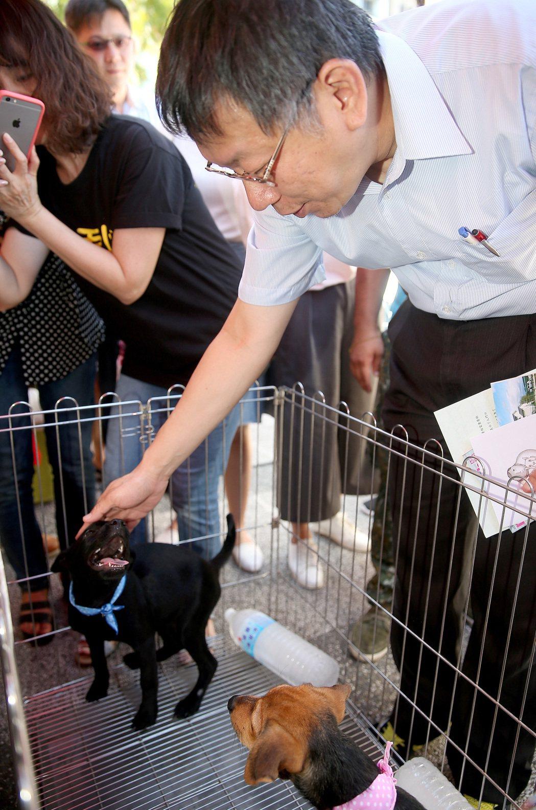 台北市長柯文哲下午出席台北世界動物日活動。記者余承翰/攝影