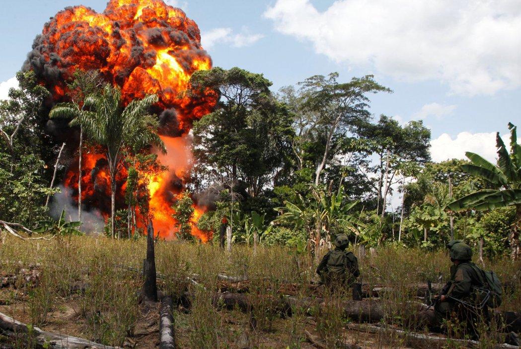 在叢林中突襲FARC製毒工廠的哥倫比亞軍隊。 圖/路透社