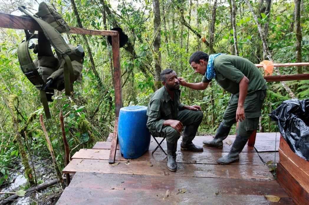 作為對FARC繳械的交換,桑托斯政府也向FARC提出了「減刑」與「參政權」等兩大...