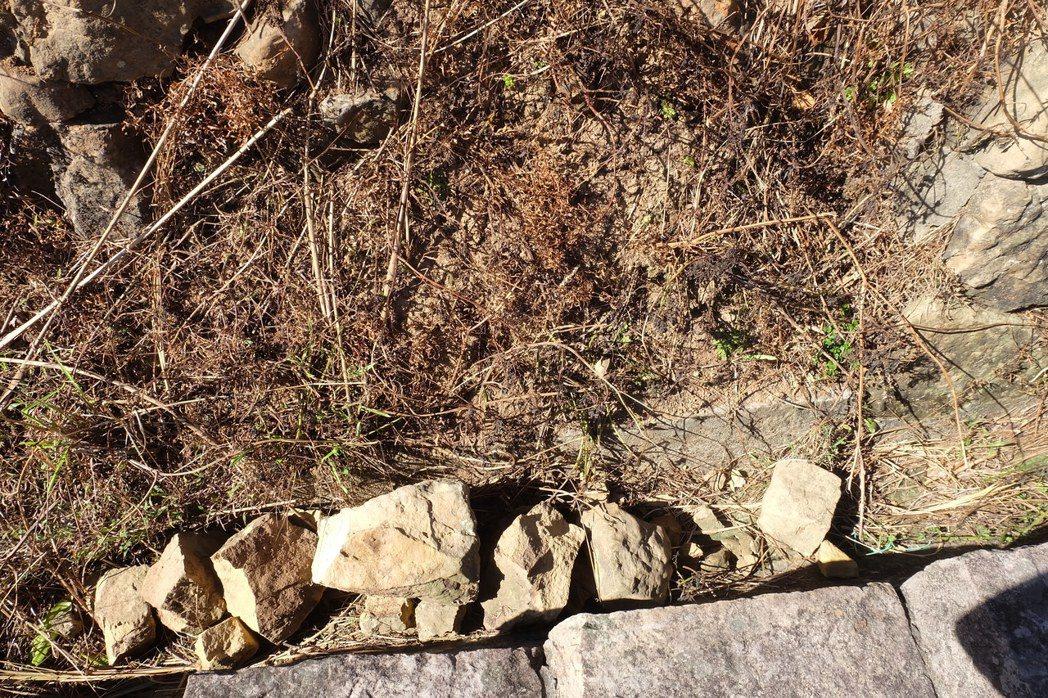 鼻頭國小旁的岩層,也因遊客屢次攀爬而崩落。記者張芮瑜/攝影