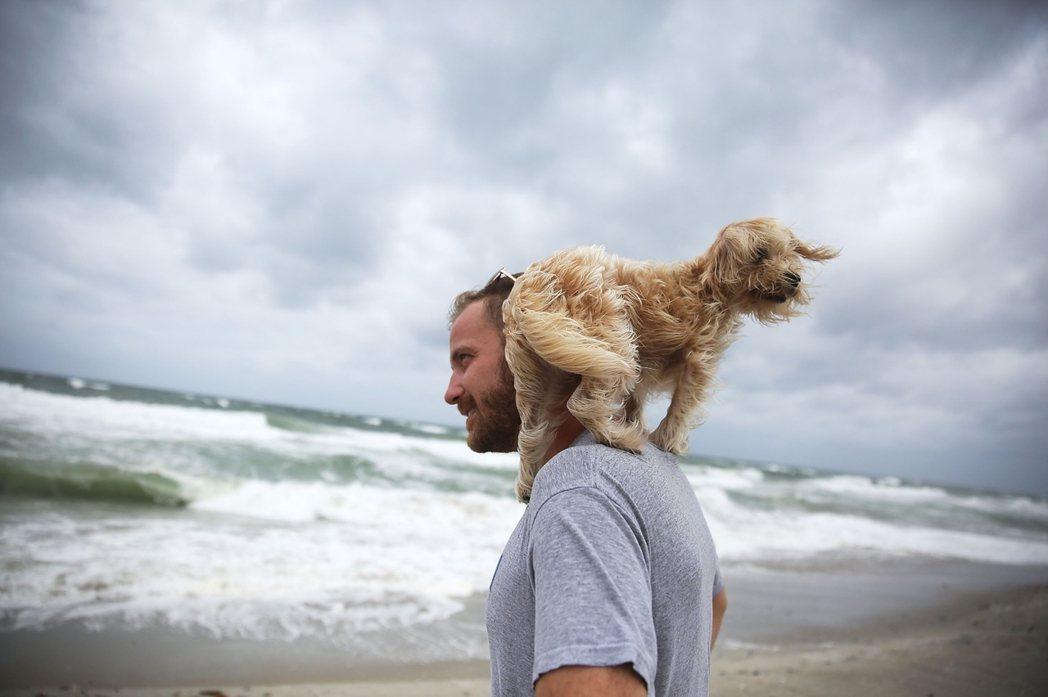 儘管佛羅里達州政府緊張無比,但仍有大批觀浪、衝浪的民眾,前往佛州東岸的棕櫚灘「體...