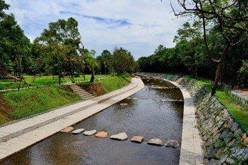 《野溪怎麼了?》——期待回復河川生命力的生態復育工程