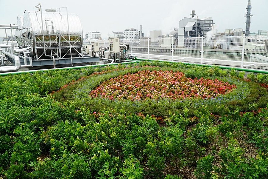 新大樓頂樓增設空中植栽花園(Sky Garden)。 台灣普利司通提供