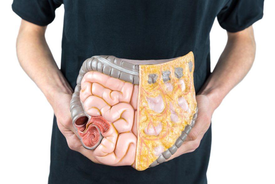 藝人豬哥亮2年多前罹患大腸癌2期,卻因聽信神明拖到今年才開刀。醫師今天表示,大腸...
