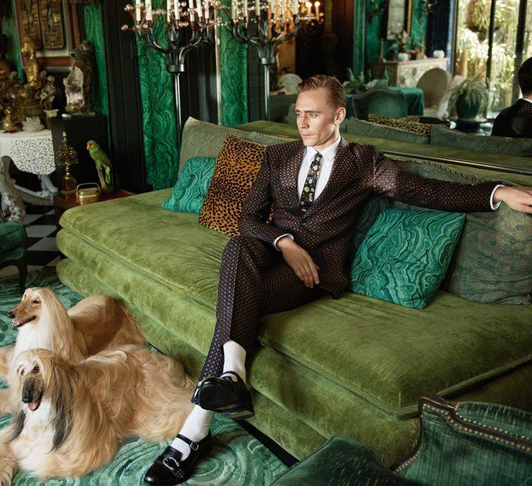 英國男星湯姆希德斯頓入鏡Gucci 2017早春都會男士西裝系列廣告。圖/Guc...