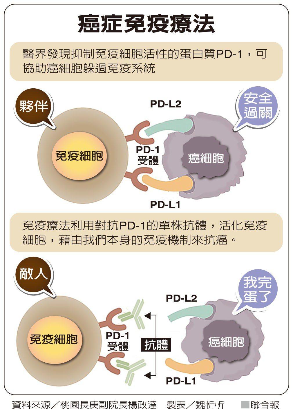 癌症免疫療法 資料來源/桃園長庚副院長楊政達 製表/魏忻忻