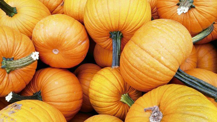 吃根莖食物為攝取到最佳營養素,我們的飲食必須具備多種色彩。在秋天,就是要吃各...