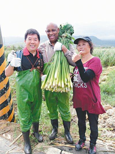 聖露西亞大使艾曼紐(中)昨在區長陳國欽(左)陪同下,體驗採收茭白筍樂趣。 圖/金...
