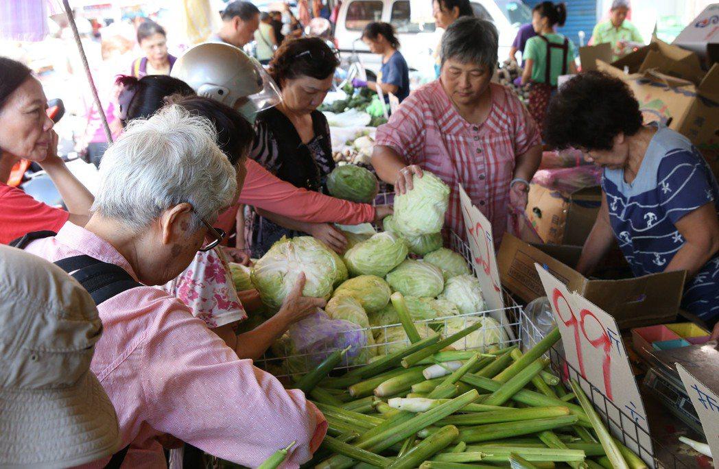 近來颱風連連來襲,菜價居高不下。記者林俊良/攝影
