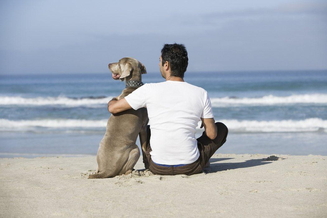 避免愛犬將細菌傳染給你,有些原則必須知道。 圖/Ingimage