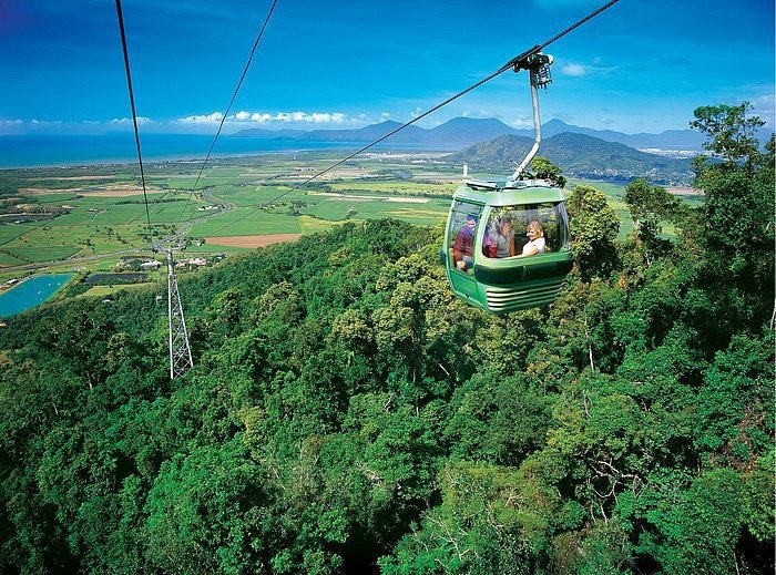 搭上空中纜車一覽雨林、大堡礁珊瑚海。圖/澳洲昆士蘭州旅遊暨活動推廣局提供