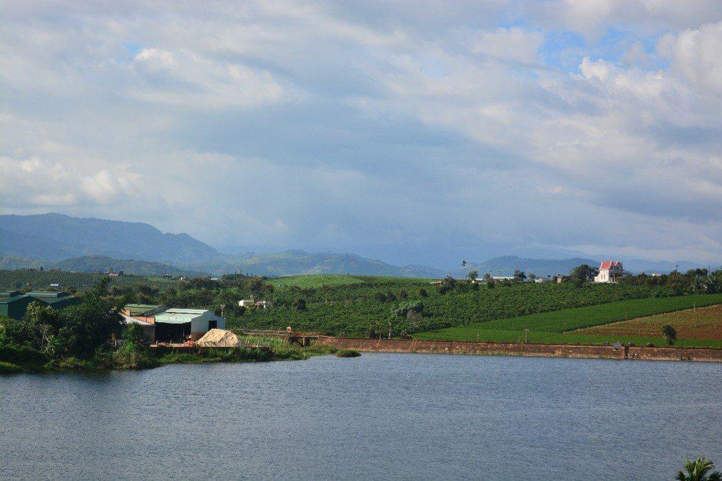 「L縣的茶廠」指的是湖對面山坡頂上,檳榔樹下的那間茶廠和周圍的茶地,這間茶場就是台灣人最早在越南試驗種植烏龍茶的地方。 攝影/作者自攝