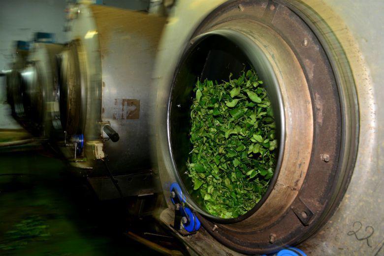 2005年開始,沉寂多年的越南茶負面形象報導,再次開始大量出現於媒體版面上。報導中,越南茶成為了阻滯台灣茶產業的罪魁禍首,被賦予毒茶、爛茶與混茶的負面形象。 攝影/作者自攝