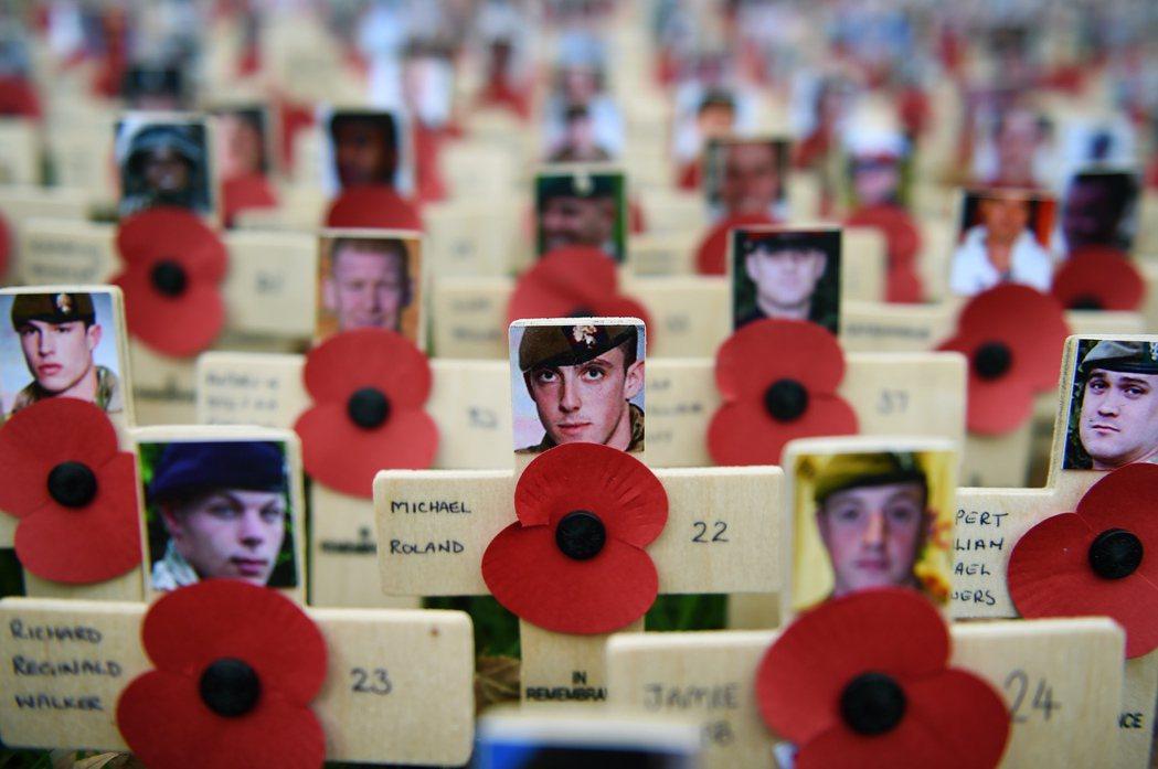 位於倫敦西敏寺的陣亡兵士紀念廣場,一排排的十字架上別著虞美人花圖樣。 圖/歐新社