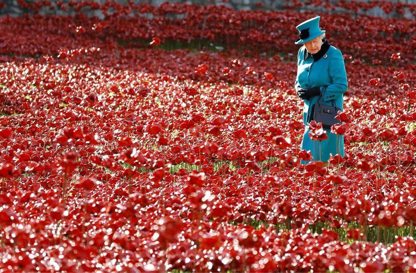 虞美人花意象是許多國家悼亡的文化象徵,不只侷限於英國。圖為英國女王伊麗莎白二世,...
