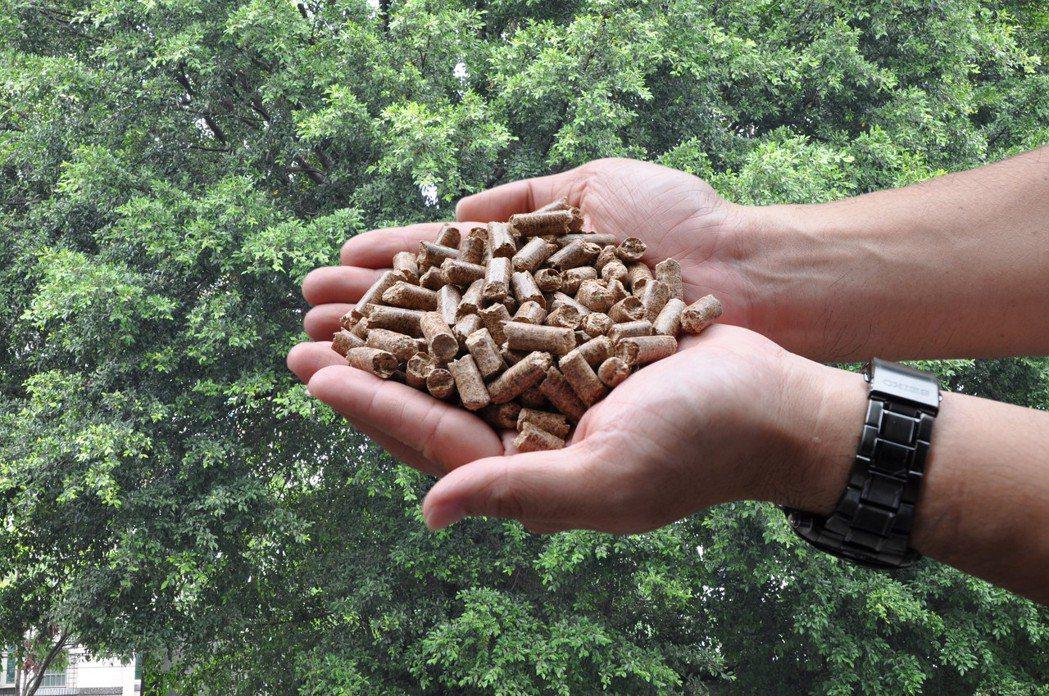 金鼎綠能研發的木顆粒。 圖/金鼎提供