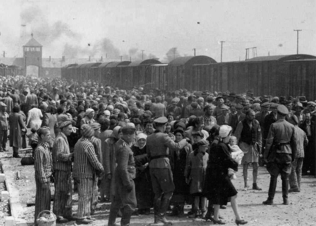 在為期三個月的計畫中,納粹與箭十字政權迅速集結匈牙利猶太人,加開火車,以每日平均...