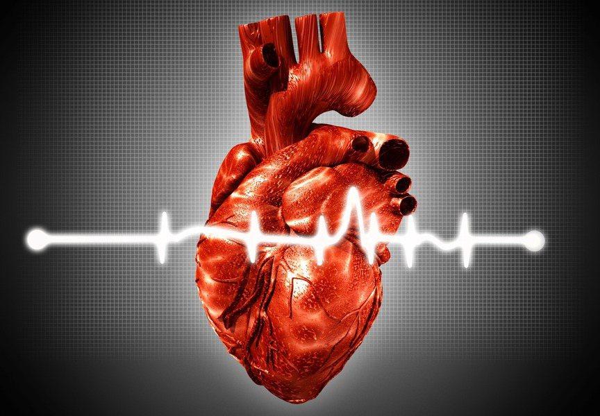 心臟病是美國人的頭號殺手,每年因心臟病而死亡的人數比所有的癌症患者加起來都多。 ...