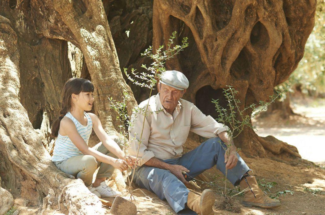 面對全球化我們該怎麼回應衝擊?一個性格衝動的西班牙女孩為了搶救下家族之樹,遠赴德國展開了一段1500公里的救樹之旅。 圖/電影《再見橄欖樹》劇照