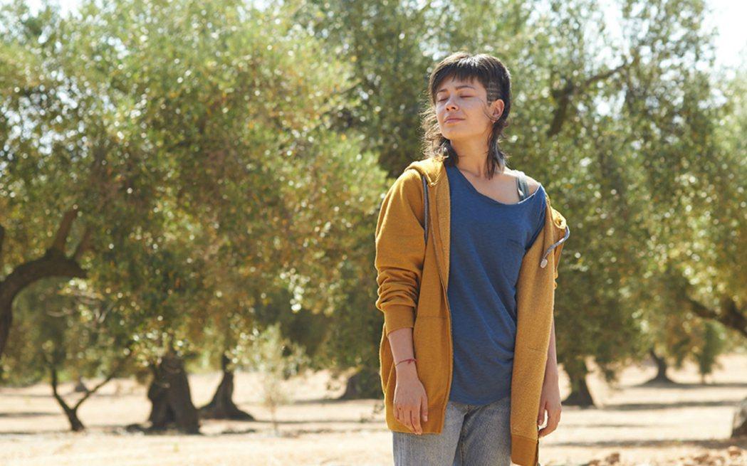 「做個關於我的小小的夢」這個貫穿眾多英國本土電影的核心命題,搬到一個全然西班牙的情境中,竟是不謀而合。 圖/電影《再見橄欖樹》劇照