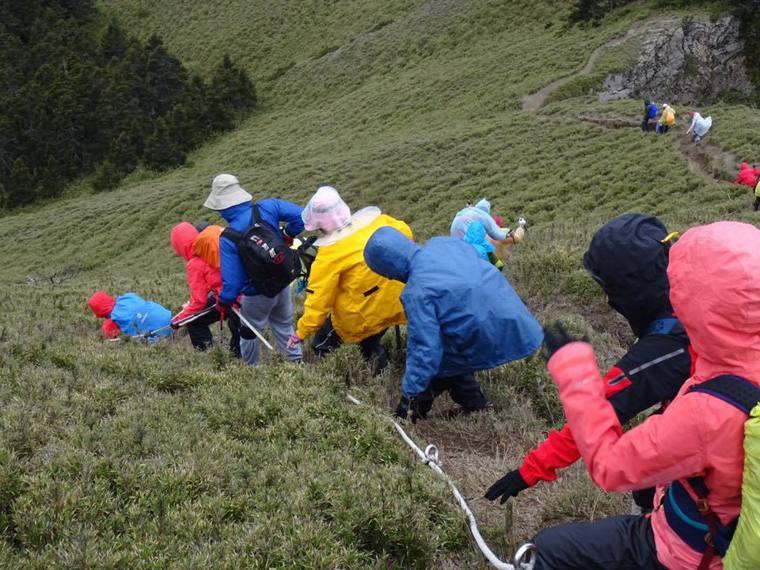 50歲後的運動建議,醫師不贊成登山健行,因膝關節修復趕不上磨損速度,易有退化性關...