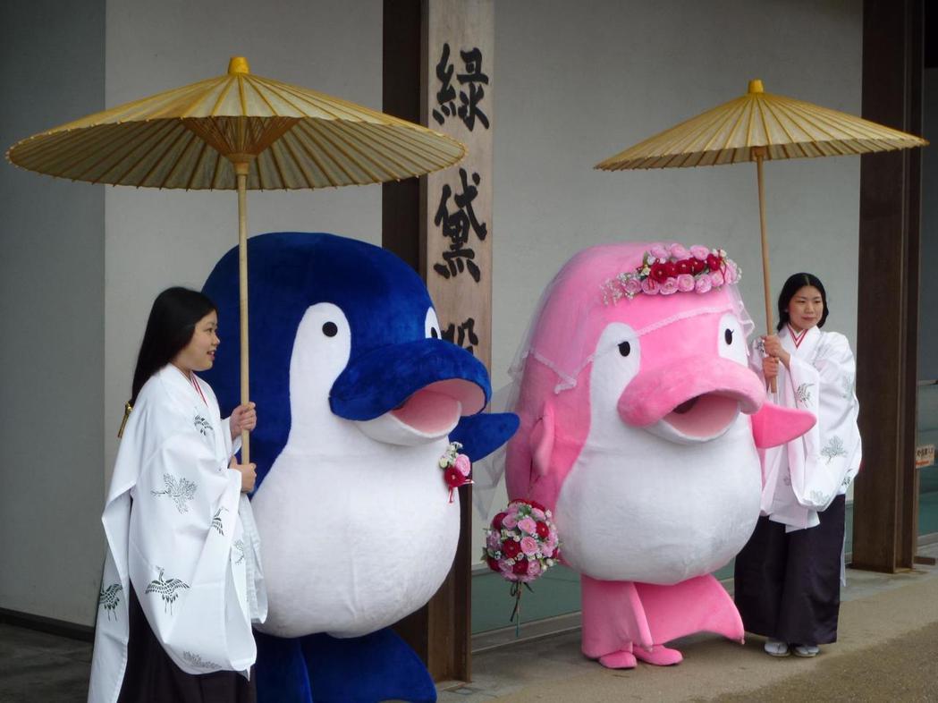 海豚KotoChan(左)與kotomiChan(右)以結婚為前提交往,2011...