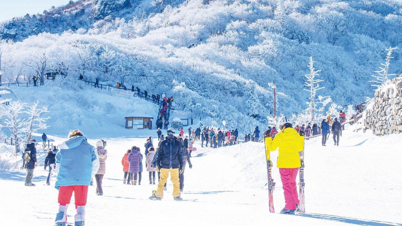 韓國雪場更適合年輕族群與入門客。 圖/易遊網提供