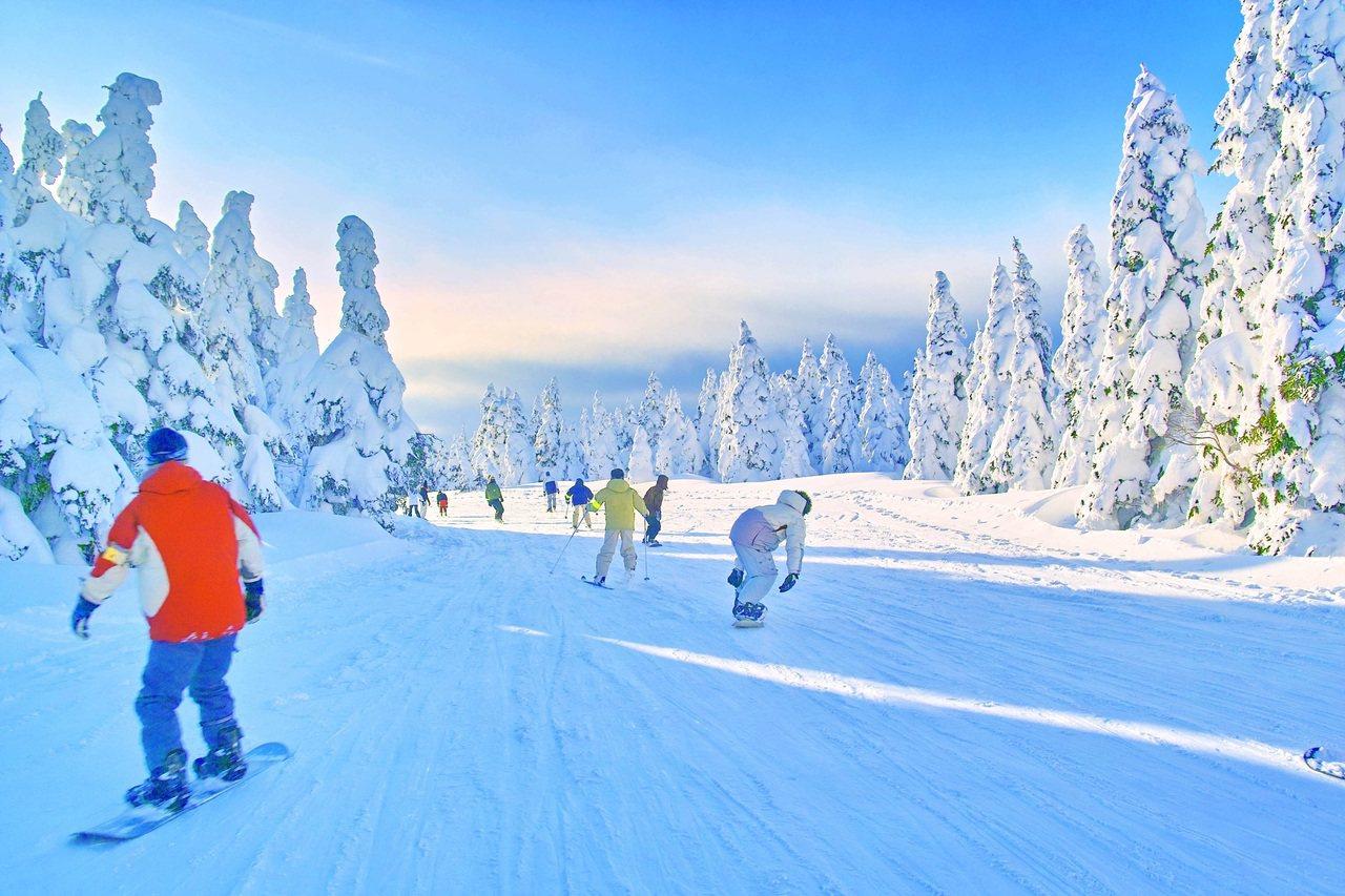 日本雪場乾淨,雪質也優。圖/易遊網提供