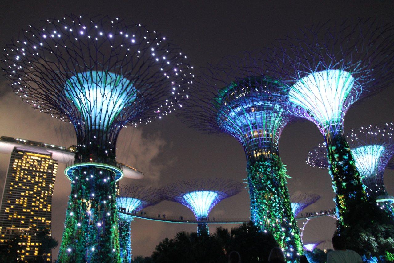 新加坡濱海灣花園。雄獅旅遊/提供