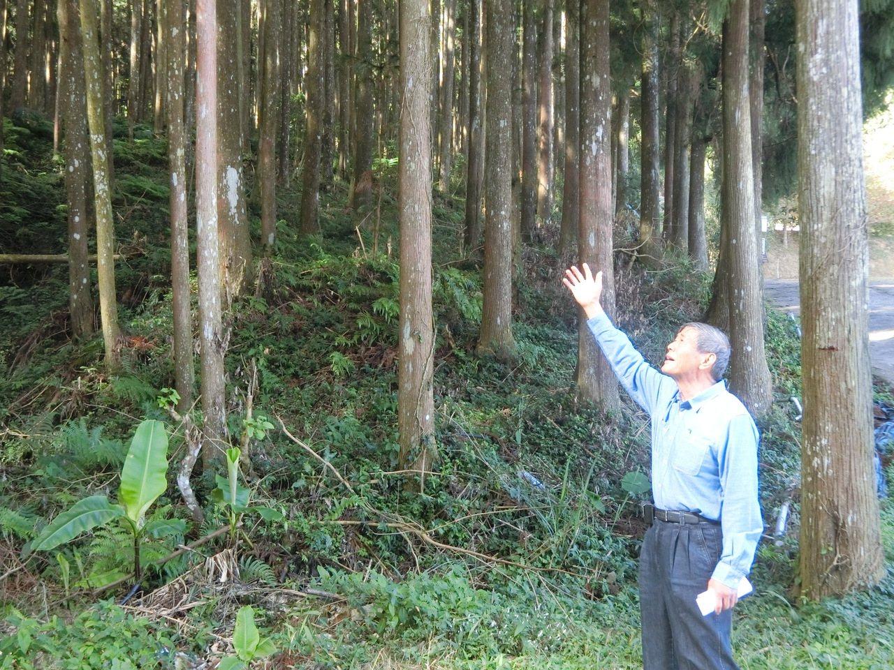 林農梁國興感嘆過去數十年幾乎被遺忘,希望政府未來能具體推動國產木材。 記者董俞佳...