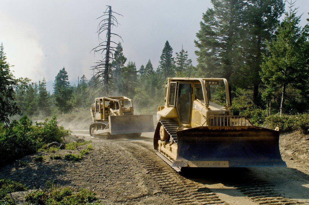 加州森林枯死的樹木高達1億200萬株,當地伐木業者接生意接到手軟,業者一天收費高...