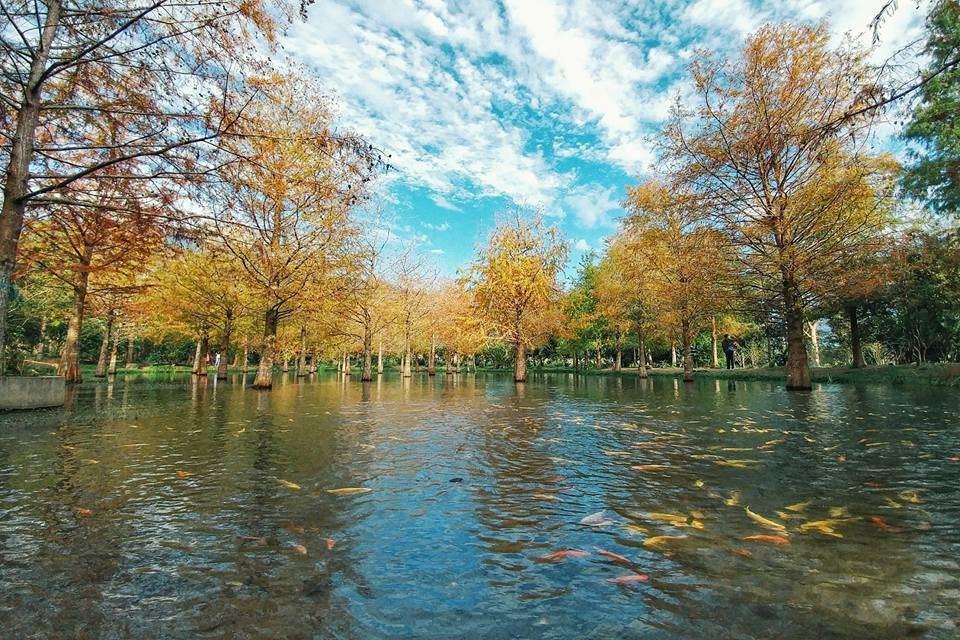 花蓮被TripAdvisor評選為2016年10大新旅遊景點。圖/讀者蘆筍伯提供