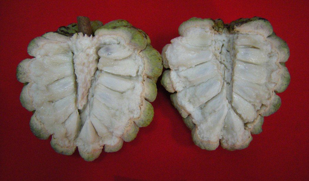 釋迦富含維生素C與B2,都是蘋果的10倍以上,是最佳抗氧化、抗老化水果,特別有助...
