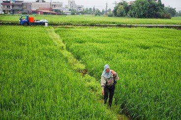 農村缺工,引進農業外勞將更惡化人吃人的壟斷體制