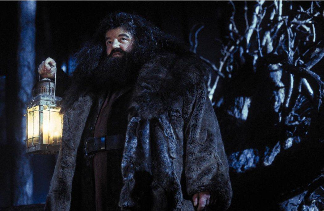「哈利波特」系列中的海格最後由英國男星羅比葛詮飾演。圖/摘自imdb
