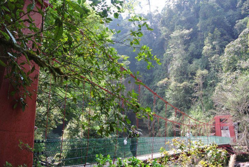 造訪杉林溪,也別忘了四處走走散步,享受芬多精洗禮。(澤澤稱奇‧小澤提供)