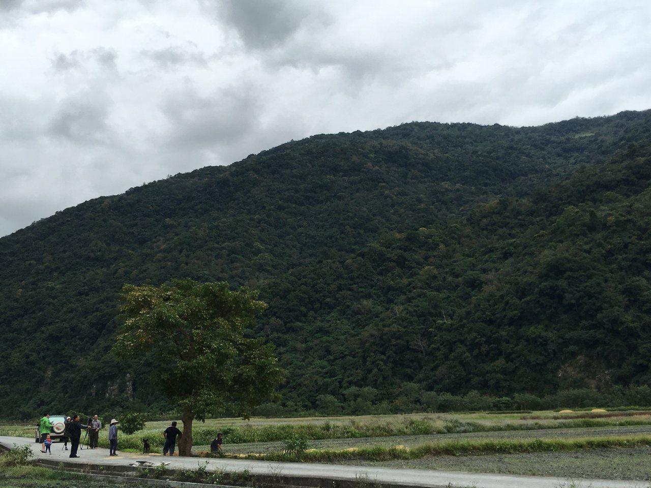 除吸引遊客拍照外,當地農民也常坐在茄苳樹下休息、吃東西。記者陳麗婷/攝影