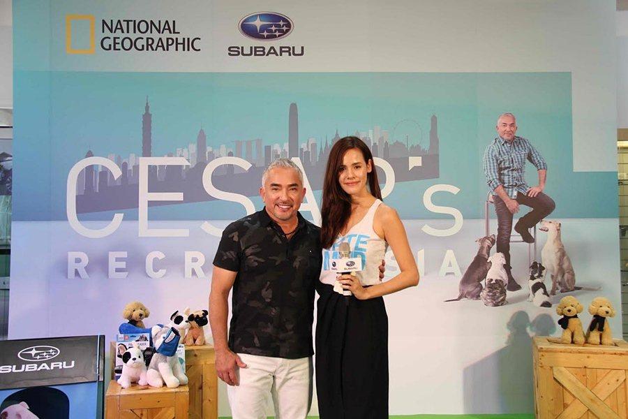意美汽車集團的品牌大使與亞洲超模的 Natalie Pickles擔任此次活動主持人,並與西薩教官一同和與會車主貴賓分享亞洲系列節目的拍攝歷程與馴犬經驗。 SUBARU提供