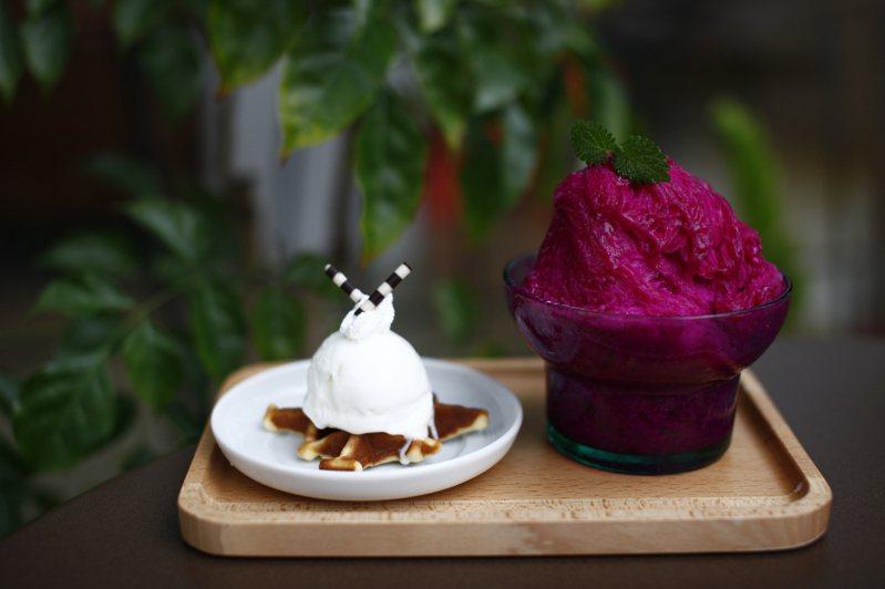 ice+艾司加冰屋以火龍果製成的美味冰品。記者王昭月/攝影