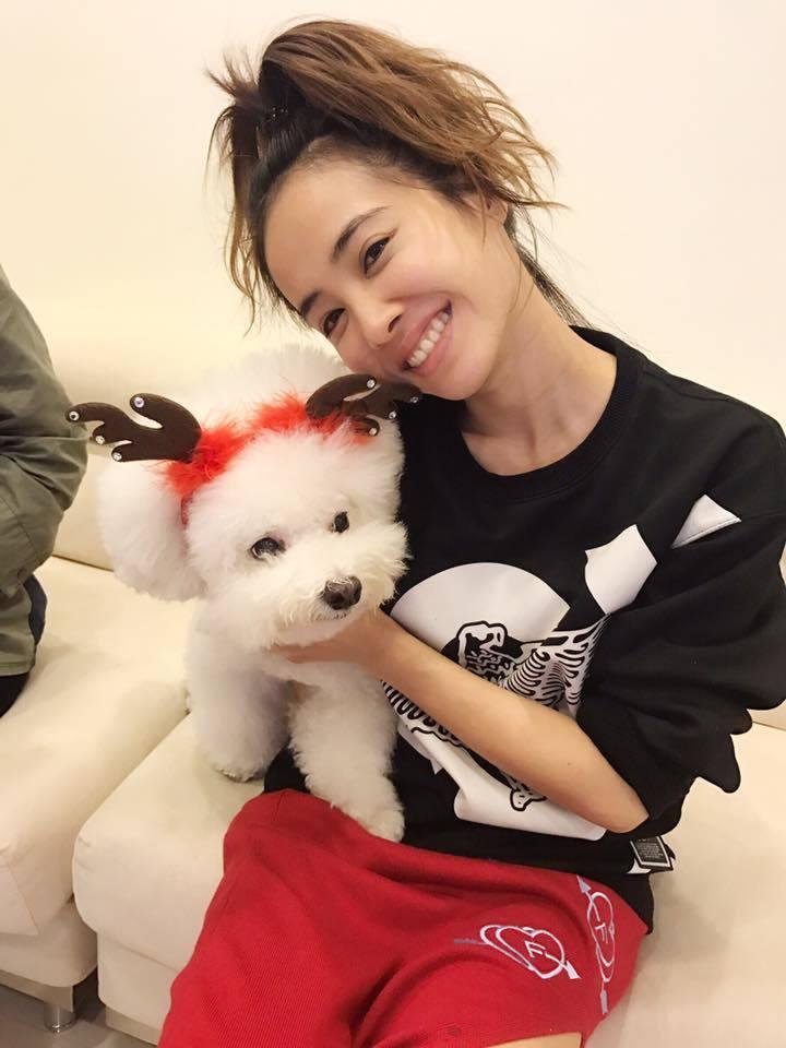 Jolin常會在臉書分享與愛犬屋虎的美照,讓屋虎成為全台最旺的狗明星之一。圖/摘...