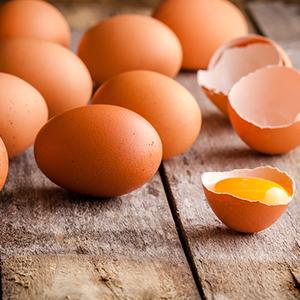 雞蛋 圖/shutterstock