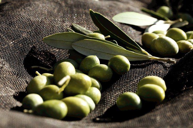 香奈兒運用「油壓環保萃取法」,結合義大利薩丁尼亞島原生橄欖的橄欖油與橄欖葉優點。...