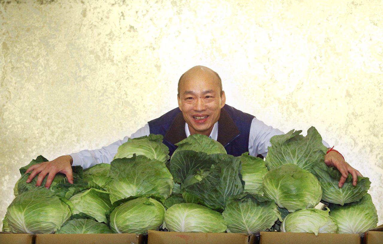 「韓國瑜 高麗菜」的圖片搜尋結果