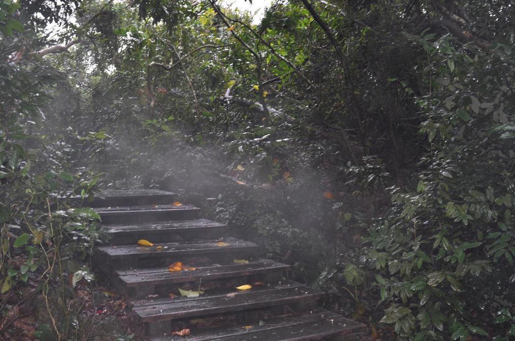 去年1月24日霸王級寒流來襲時,「井觀洞」旁出現噴煙的奇景。圖/楊吉壽提供